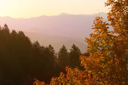 newfound gap: View of Smoky Mountains from Newfound Gap. Stock Photo