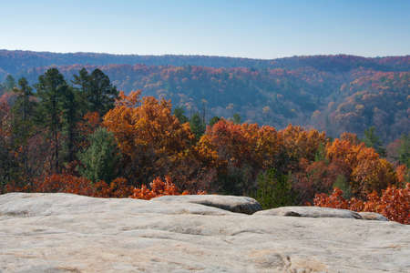 Fall color from an overlook at Big South Fork National Park