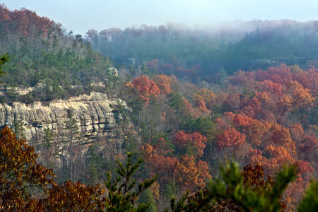 View of Big South Fork National Park from an overlook Stok Fotoğraf