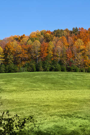 Fall landscape in McMinn County, Tennessee, USA photo