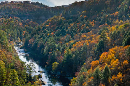 wilderness area: View of Obed Wild and Scenic River