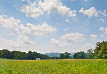 shady: Shady Valley, Tennessee landscape with field and clouds