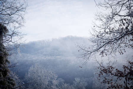 frigid: Ice storm and winter landscape, Clinton, Tennessee USA