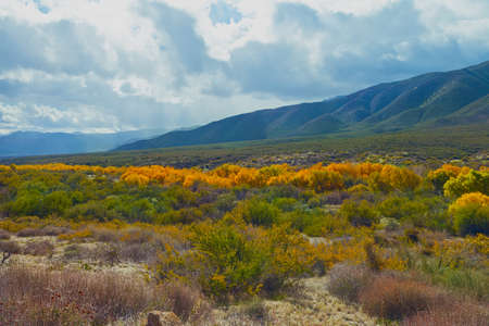 warner: Fall color in the valley at Warner Springs, California Stock Photo
