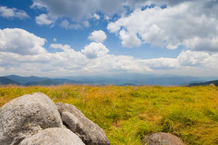 roan: View from Round Bald near Roan Mountain