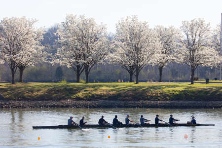 tn: OAK RIDGE, TN - MARCH 18: Rowing teams from the United States and Canada take part in spring training at the marina at Melton Lake on March 18, 2016 in Oak Ridge, TN. Editorial