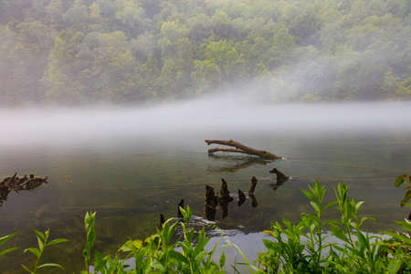 Early morning fog on the river at Norris Dam State Park