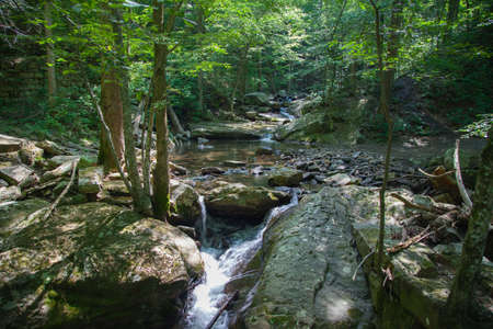 Laurel-Snow State Natural Area stream crossing from bridge Stok Fotoğraf