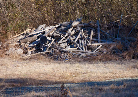 A pile of weathered and cut wood