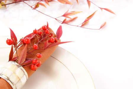 napkin ring: Decorative cloth napkin in napkin ring with red and orange leaves and berries