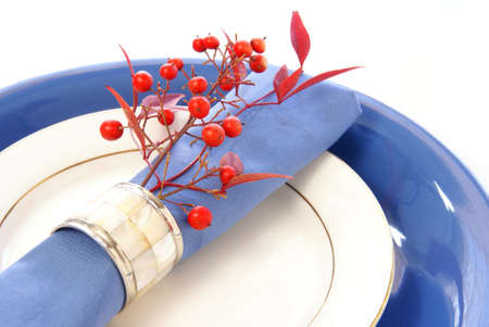 Elegant table setting in blue and white, with fresh sprigs of leaves and berries Stock Photo - 2655244