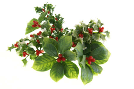 Holiday Greenery Decorations with leaves, berries, holly, and mistletoe on white