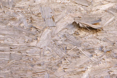 Plywood texture with peeling and curling strips of wood