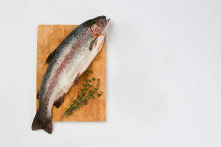A close up of a fish Stock Photo