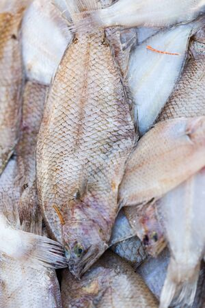 Fresh catched fishes and other seafood on market in Morocco ready for sell