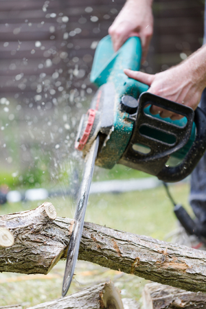 Lumberjack cuts a tree in the garden. Close up on cutting branch and working hands. Vertical crop