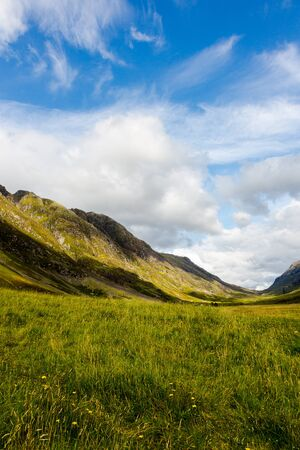 drive through: Highlands in Scotland with green meadows, blue sky and white clouds. Vertical crop, low angle perspective
