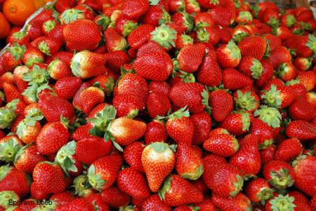fruit strawberry photo