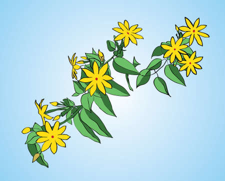 Branch with green leaves and yellow flowers on a blue background Vector
