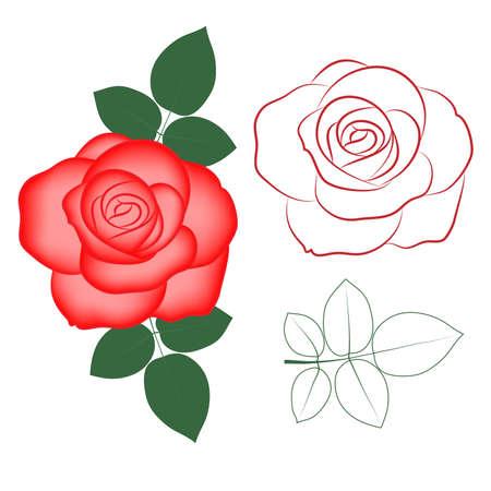 Rode roos geschilderd silhouet en in kleur, vector