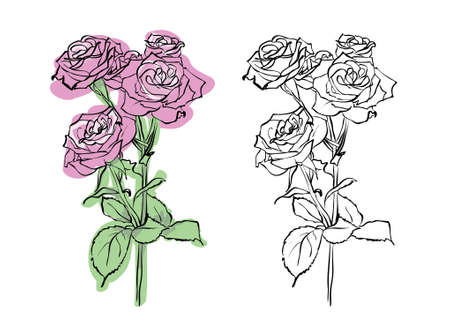 outline wedding: Red rose painted silhouette and in color, vector