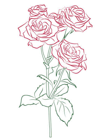 tattoo flower: Red rose painted silhouette and in color, vector