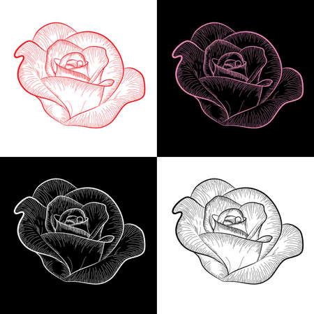 sencillez: Cuatro rosas pintadas en el color y la silueta de vector,