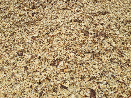 sawdust: Textured background of wood chips on the ground