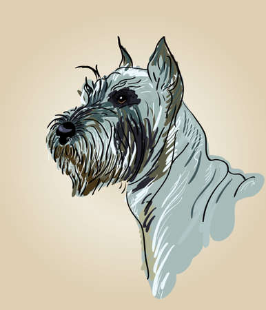 airedale terrier: Drawing head of a dog breed terrier, vector Illustration