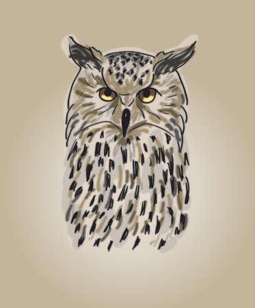 Single brown owl photo