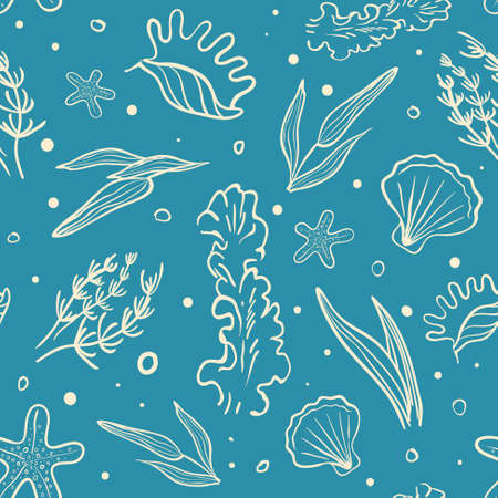 alga: Vector Seamless Sea Pattern with Stylized Algae and Seashell. Abstract Hand Drawn Background
