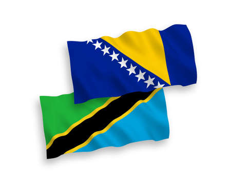 National vector fabric wave flags of Bosnia and Herzegovina and Tanzania isolated on white background. 1 to 2 proportion. 向量圖像