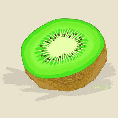 kiwi fruit: Dibujado a mano fruta fresca de kiwi