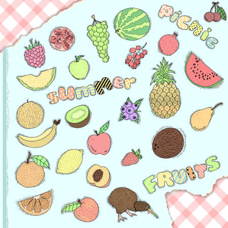 Set of hand drawn fruits Vector