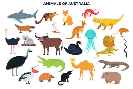 Big collection of cute funny wild animals of Australia. Bundle of adorable cartoon Australian mammals, birds, reptiles, fish isolated on white background. Colorful vector illustration in flat style.