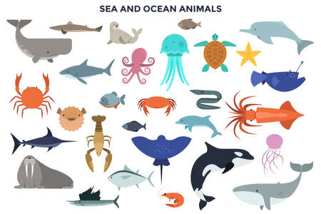 Set of Water and Ocean Animals