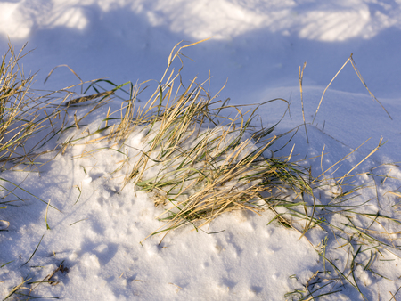 snow and ice and wintry textures and different wintry backgrounds Stock Photo