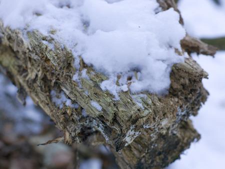 Schnee und Eis und winterliche Texturen und verschiedene winterliche Hintergründe Standard-Bild