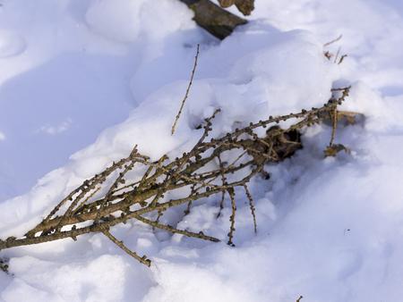 Schnee und Eis und Winter Texturen und hintergr�¼nde Standard-Bild