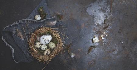 Esaster Dekoration mit Nest und Ei auf dunklem Hintergrund Standard-Bild - 70289160