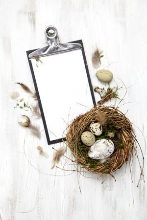 beautiful Easter decoration with nest and egg on white wood background Stock Photo