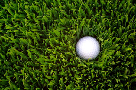 recreational pursuits: Golf ball stuck in rough grass