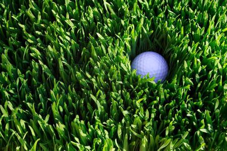 stuck up: Golf ball hidden in the rough grass, top view
