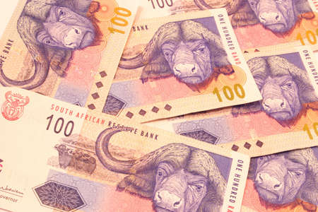 south african: One hundred rand banknotes second largest bill from South Africa. Stock Photo