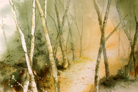 righteous: Original watercolour forest path background.