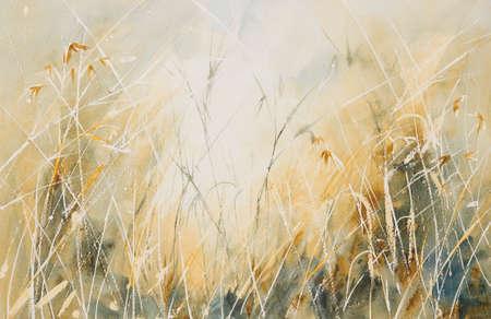 Original watercolour, Long grass in a meadow. Stock Photo