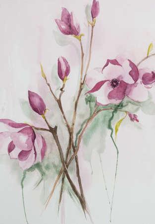 magnolia: Original watercolour, magnolia flowers. Stock Photo