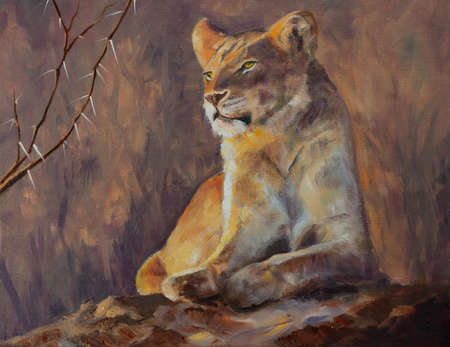 Original oil painting, Lioness surveying her domain.