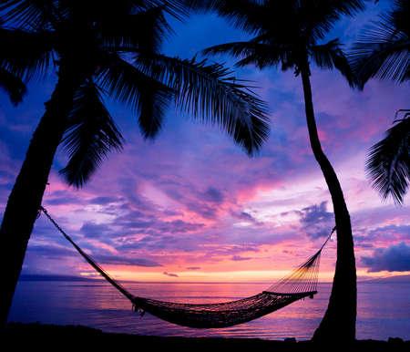 hawai: Hermoso Atardecer de vacaciones, Hamaca Silueta con las palmeras Foto de archivo