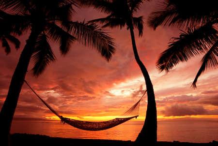 hamaca: Puesta de sol vacaciones hermosas, silueta hamaca con las palmeras